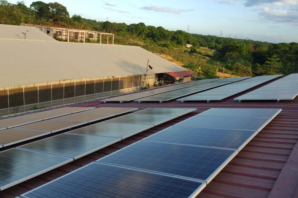 The Ultimate Solar Panel Guide – Home Installation and Costs